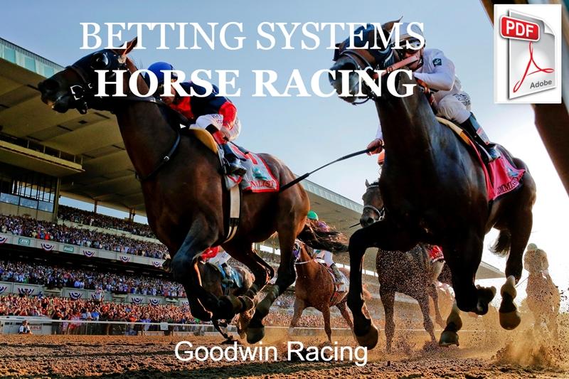 Goodwin Racing System